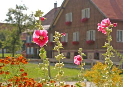 © Kultur und Tourismusamt Lindenberg